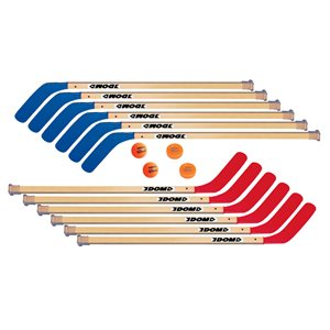"Ens. de 12 bâtons de hockey 42"" + balles / rond."
